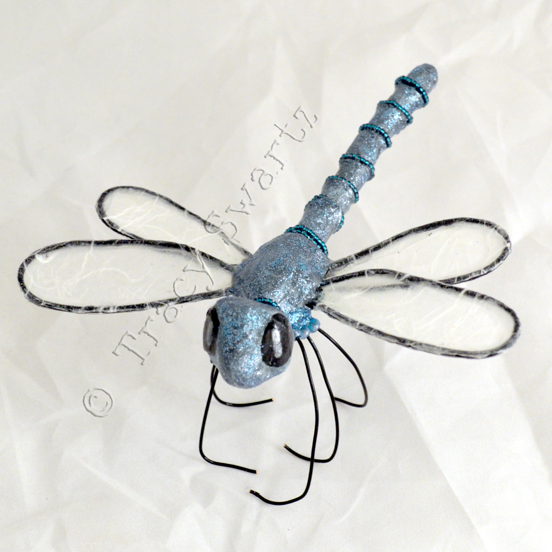 dragonfly fini-1